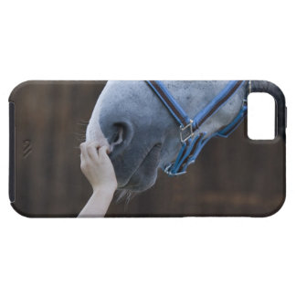 close-up of young girl touching white horse tough iPhone 5 case