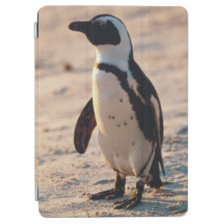 Close-up of young penguin iPad air cover