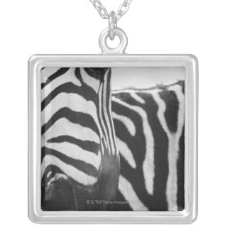 Close-up of zebra face and shoulder silver plated necklace