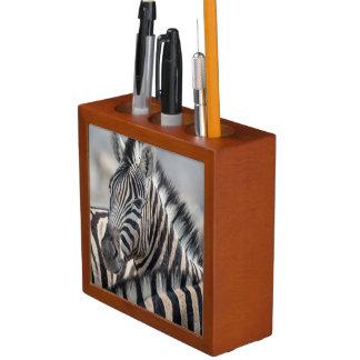 Close-up of zebra head between two other zebras desk organiser