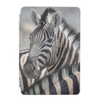 Close-up of zebra head between two other zebras iPad mini cover