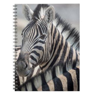 Close-up of zebra head between two other zebras notebook