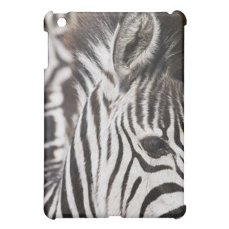 Close up of zebra iPad mini covers