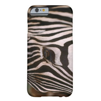 Close-up of zebra's head barely there iPhone 6 case