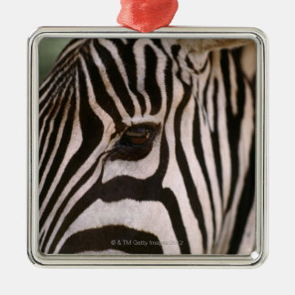 Close-up of zebra's head christmas ornament