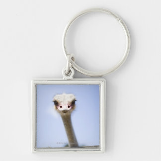 Close up Ostrich head Key Ring