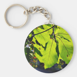 Close Up Photo Of Beech Leaves Basic Round Button Key Ring