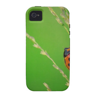 close up photo of ladybird with natural green back iPhone 4/4S cover