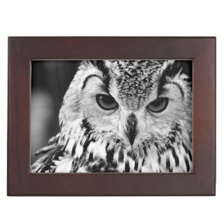 Close Up Portrait Of Eurasian Eagle-owl Keepsake Box