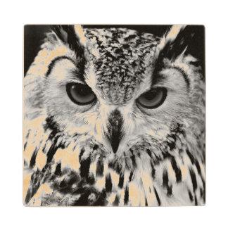 Close Up Portrait Of Eurasian Eagle-owl Maple Wood Coaster