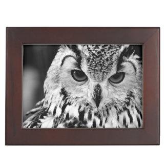 Close Up Portrait Of Eurasian Eagle-owl Memory Box