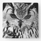 Close Up Portrait Of Eurasian Eagle-owl Square Wall Clock