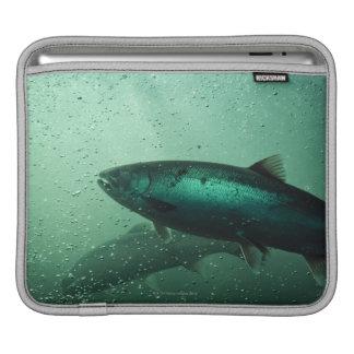 Close up shot of salmon running 2 iPad sleeve