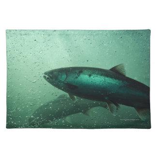 Close up shot of salmon running 2 placemat