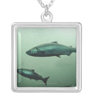 Close up shot of salmon running silver plated necklace