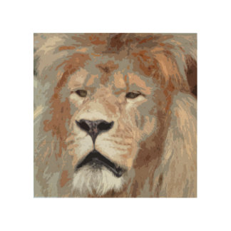 Close-up Stylized Illustration of a Male Lion Wood Canvases