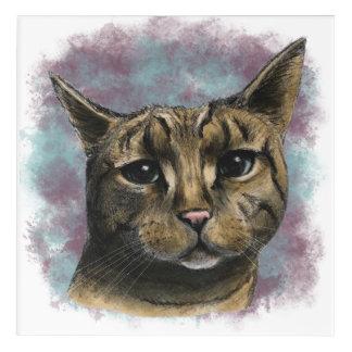 Close Up Tabby Cat Realistic Drawing Acrylic Print