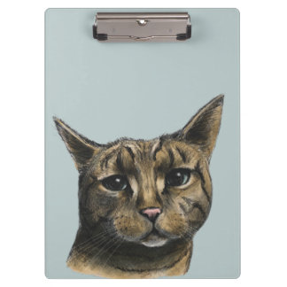 Close Up Tabby Cat Realistic Drawing Clipboards