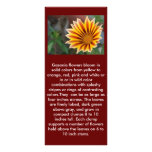 Close Up Tiger Gazania in Red, Gold and Green Personalised Rack Card