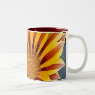 Close Up Tiger Gazania in Red, Gold and Green Two-Tone Mug