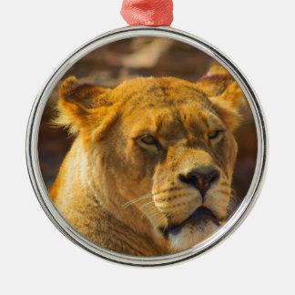 Close_Up_Tiger.jpg Christmas Ornament