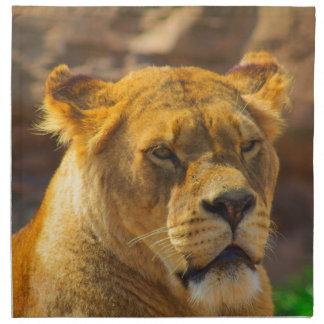 Close_Up_Tiger.jpg Napkin