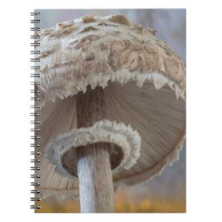 Close-Up Underside Of Mushroom Notebooks