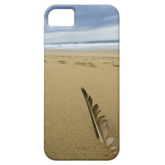 Close-up view of bird feather in beach sand, case for the iPhone 5