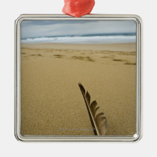 Close-up view of bird feather in beach sand, christmas ornament