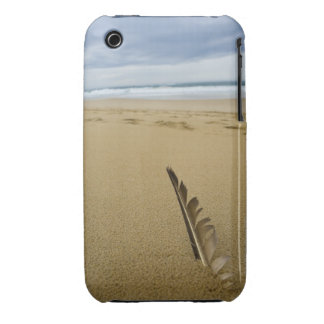 Close-up view of bird feather in beach sand, iPhone 3 covers