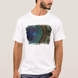 Close up view of eyespot on male peacock feather T-Shirt