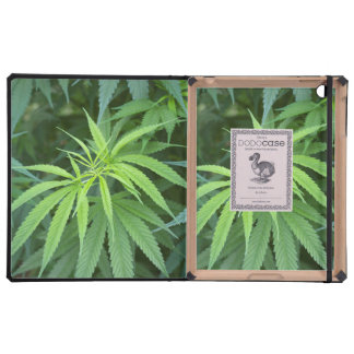 Close-Up View Of Marijuana Plant, Malkerns Case For iPad