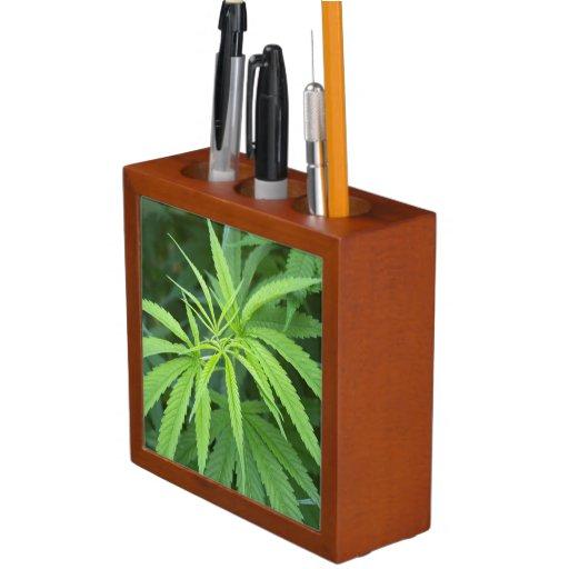 Close-Up View Of Marijuana Plant, Malkerns Pencil/Pen Holder