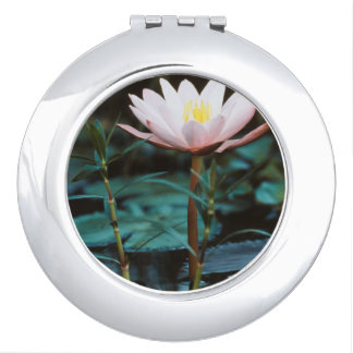 Close-Up view of Water Lily at Inle Lake Compact Mirror