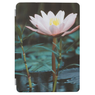 Close-Up view of Water Lily at Inle Lake iPad Air Cover