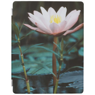 Close-Up view of Water Lily at Inle Lake iPad Cover