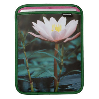 Close-Up view of Water Lily at Inle Lake iPad Sleeve