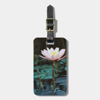 Close-Up view of Water Lily at Inle Lake Luggage Tag