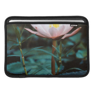 Close-Up view of Water Lily at Inle Lake MacBook Air Sleeve