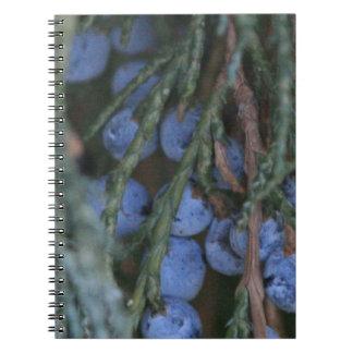 Close Up Winter Berries Notebook