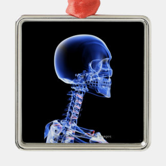 Close up x-ray of the bones in the neck christmas ornament