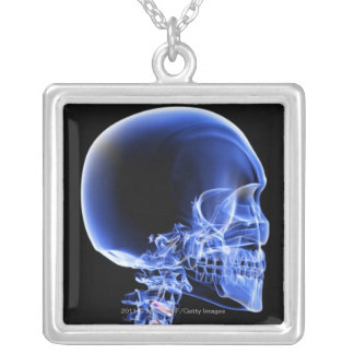 Close up x-ray of the bones in the neck silver plated necklace