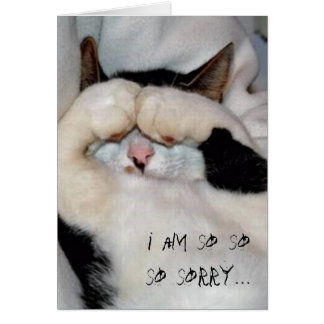 closed eye kitty, i am so so so sorry... card