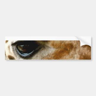 Closeup Giraffe Face Wild Animals Nature Photo Bumper Sticker