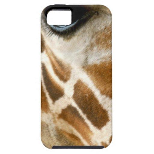 Closeup Giraffe Face Wild Animals Nature Photo iPhone 5/5S Case