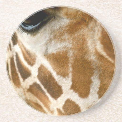 Closeup Giraffe Face Wild Animals Nature Photo Beverage Coasters