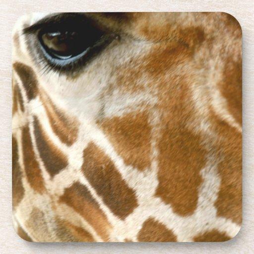 Closeup Giraffe Face Wild Animals Nature Photo Drink Coaster
