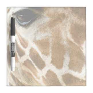 Closeup Giraffe Face Wild Animals Nature Photo Dry-Erase Board