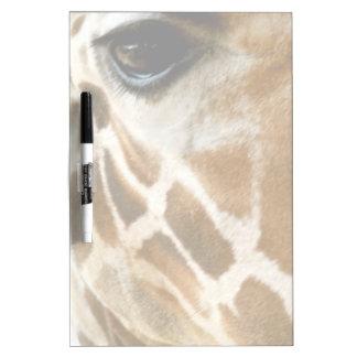 Closeup Giraffe Face Wild Animals Nature Photo Dry Erase White Board
