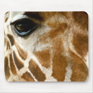 Closeup Giraffe Face Wild Animals Nature Photo Mousepads